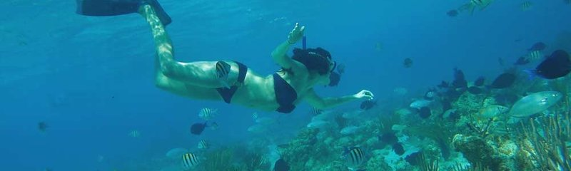 Snorkel Excursions in Grand Cayman